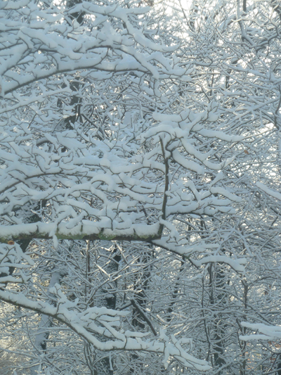 a-snow
