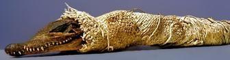 a-croc